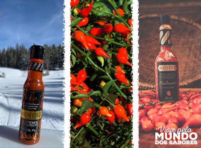 Habanero, biquinho e malagueta: quais curiosidades guardam essas pimentas?